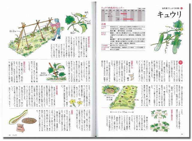 shizennou-sample2